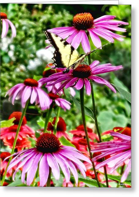 Tiger Swallowtail On Coneflower Greeting Card by Susan Savad