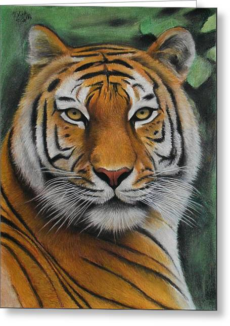 Tiger - The Heart Of India Greeting Card