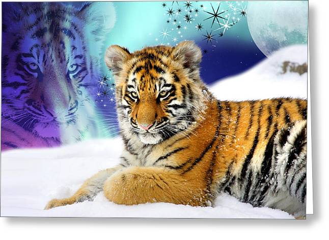 Tiger Treasures Greeting Card by Julie L Hoddinott