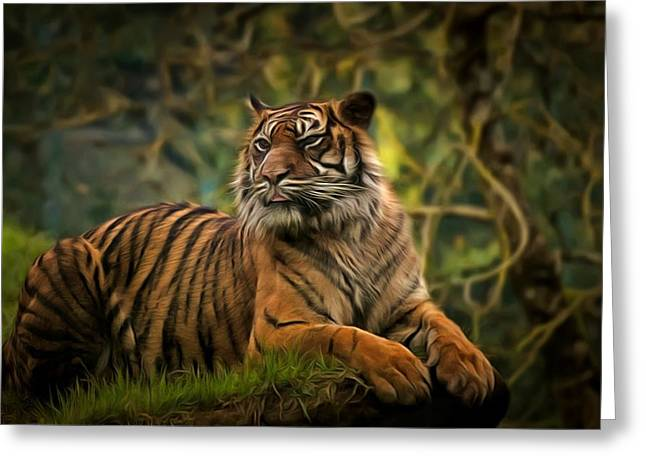 Greeting Card featuring the photograph Tigers Beauty by Scott Carruthers