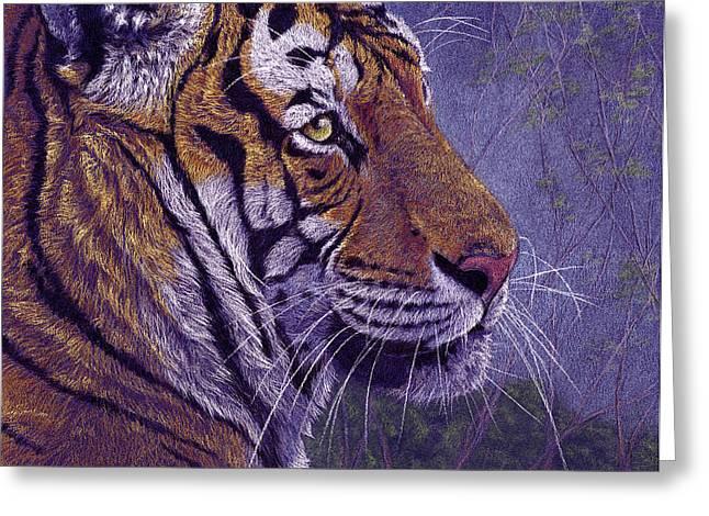 Tiger's Thoughts Greeting Card by Svetlana Ledneva-Schukina