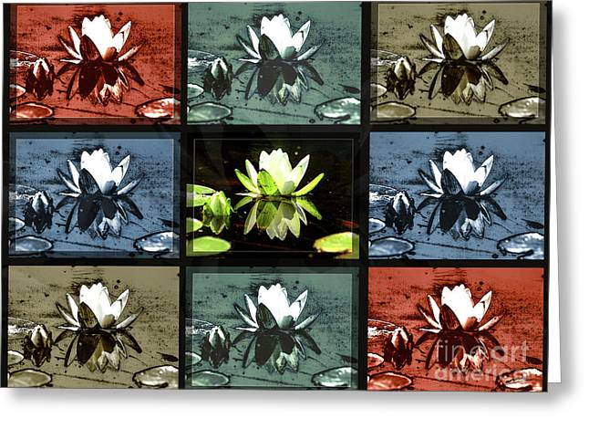 Tiled Water Lillies Greeting Card