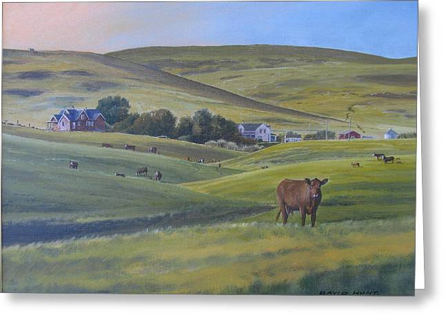 Till The Cows Come Home Greeting Card by David Hunt