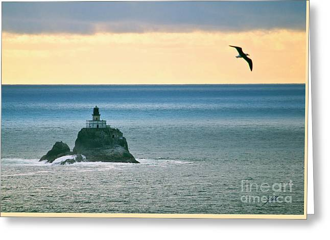 Greeting Card featuring the photograph Tillamook Lighthouse by Suzette Kallen
