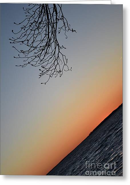 Tilted Exposure Greeting Card