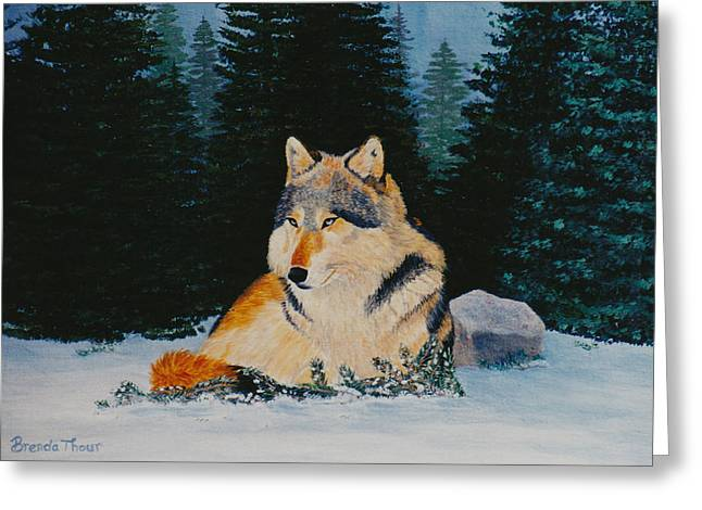 Greeting Card featuring the painting Timber Wolf by Brenda Thour