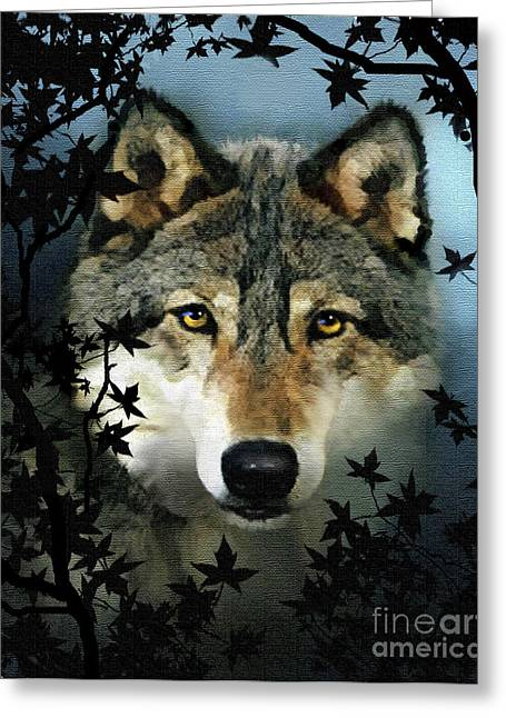 Timber Wolf Greeting Card by Robert Foster