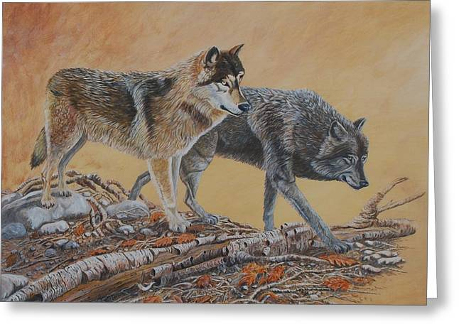 Timber Wolves Greeting Card by Santo De Vita