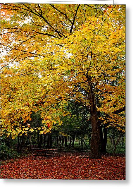 Time For Change Greeting Card by Debbie Oppermann
