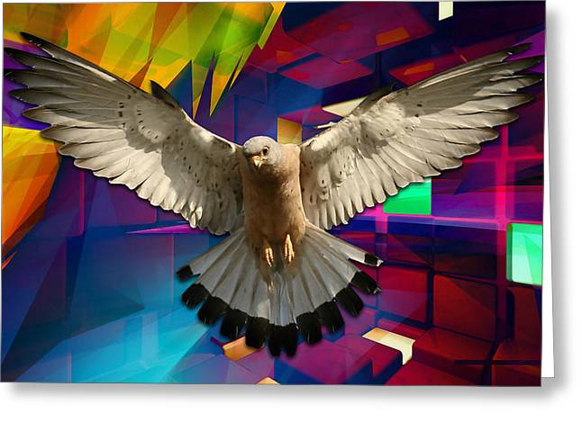 Time For Me To Fly Greeting Card