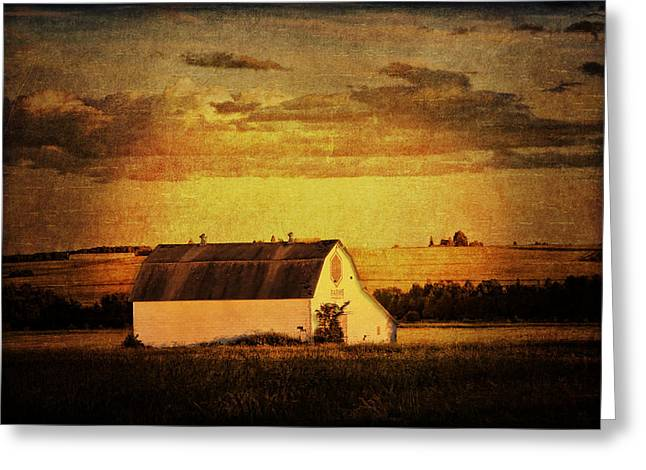 Recently Sold -  - Old Maine Barns Greeting Cards - Time to Farm Greeting Card by Gary Smith
