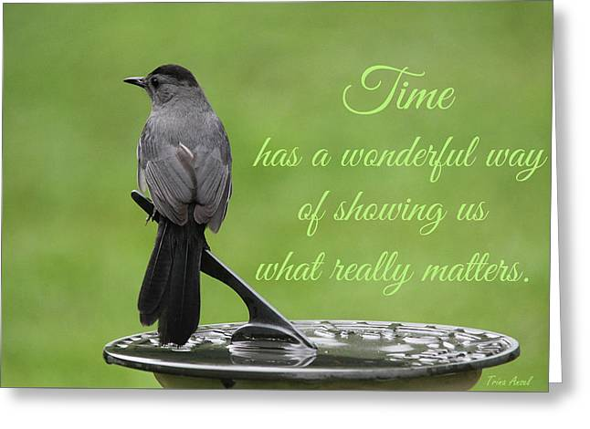 Greeting Card featuring the photograph Time by Trina Ansel