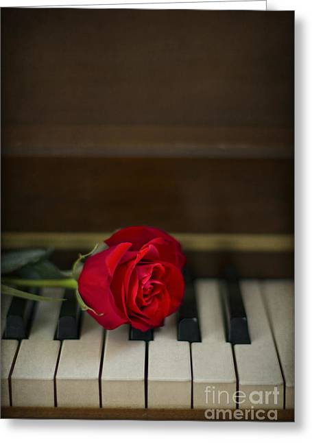 Timeless Melody Greeting Card