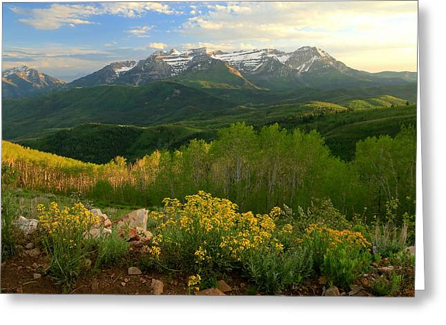 Timpanogos From Mill Canyon Peak. Greeting Card by Johnny Adolphson