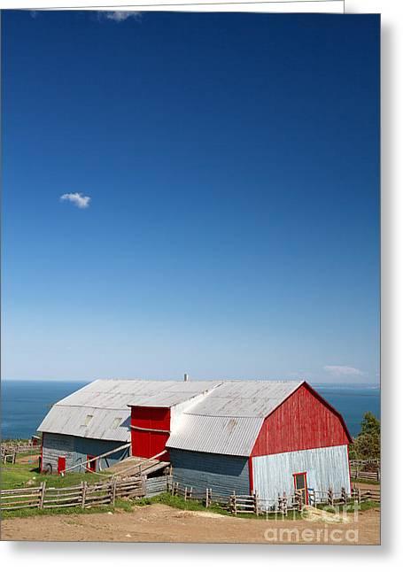 Tin Barn, La Malbaie Greeting Card by Jane Rix