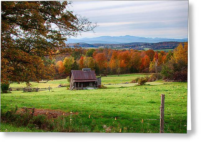tin roofed shed in Vermont autumn Greeting Card