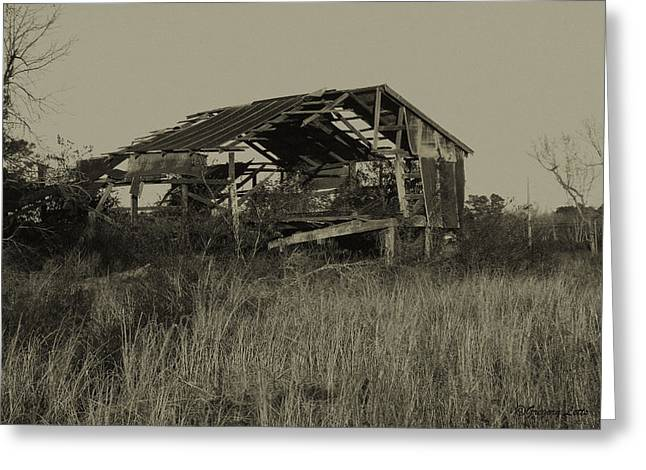 Tin Shack Greeting Card by Gregory Letts