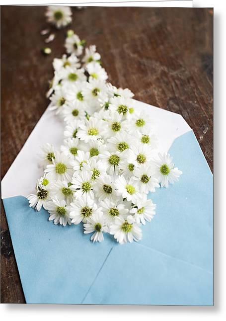 Tiny Daisies Spilling From Blue Envelope Greeting Card