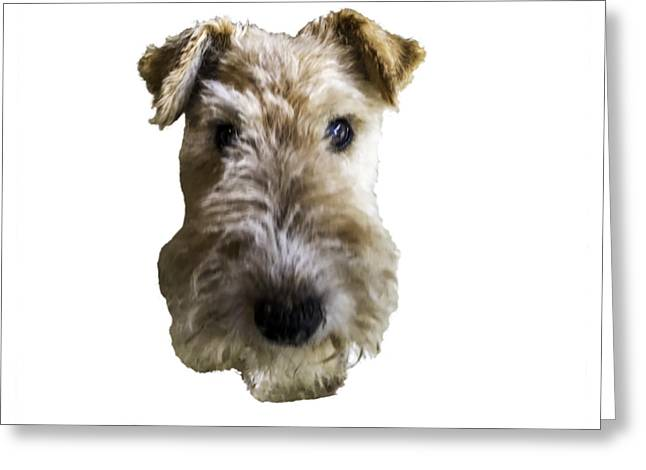Tipper The Fox Terrier Greeting Card