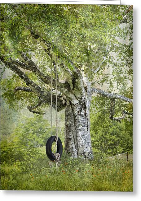 Tire Swing Hanging Off A White Birch Greeting Card