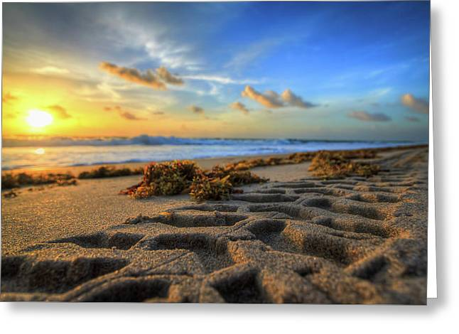 Tire Tracks In Sand Sunrise Greeting Card