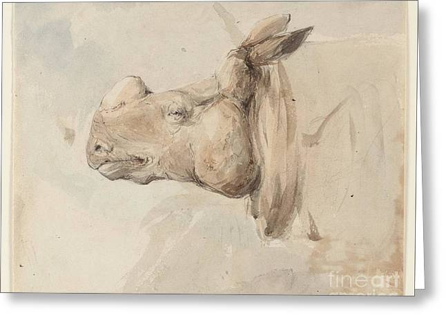 Title The Head Of A Rhinoceros Greeting Card by MotionAge Designs