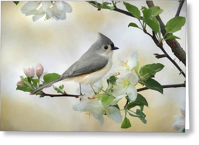Greeting Card featuring the mixed media Titmouse In Blossoms 1 by Lori Deiter