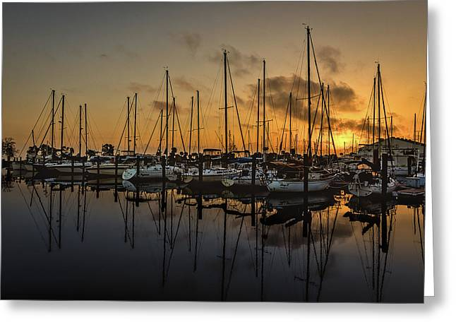 Titusville Marina Greeting Card