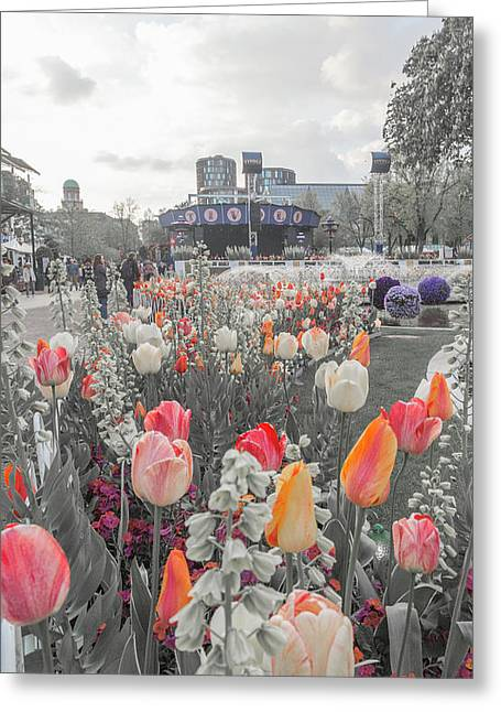 Tivoli Gardens Bring Out Your Reds Oranges Purples Greeting Card