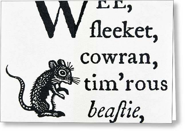 To A Mouse. Greeting Card by Stan Pritchard
