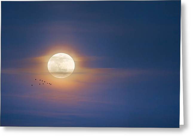 To The Moon Greeting Card by Bill Wakeley