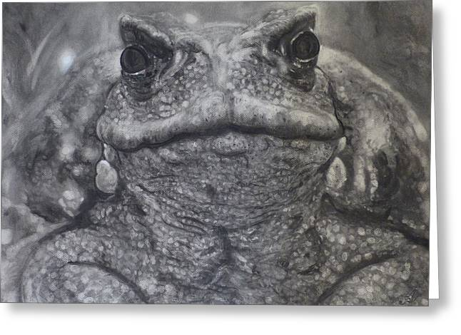 Toad Greeting Card by Adrienne Martino