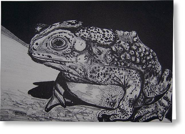 Lithograph Mixed Media Greeting Cards - Toad Greeting Card by Jude Labuszewski