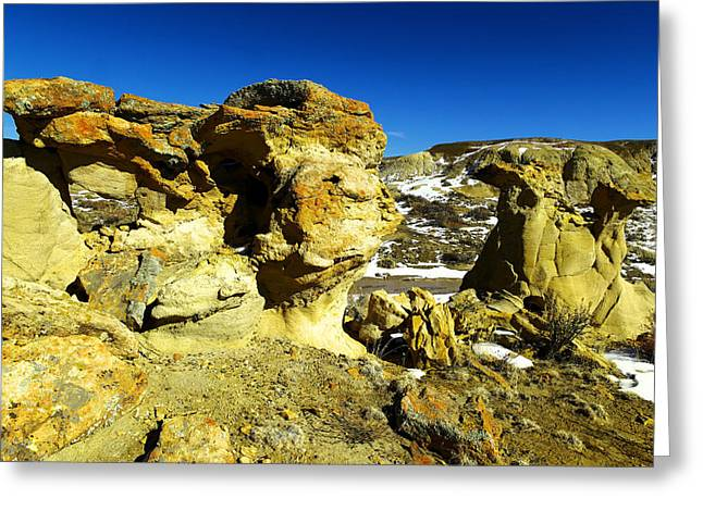 Toad Stools In The Bisti Badlands Greeting Card by Jeff Swan