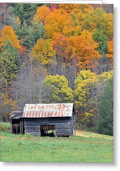 Tobacco Barn Greeting Card by Alan Lenk
