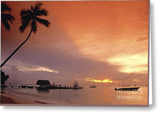 Greeting Card featuring the photograph Tobago, Pigeon Point Sunset, Caribbean Sea, by Juergen Held