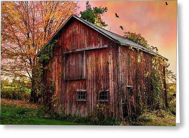 Tobin's Vintage Countryside Barn Greeting Card by Thomas Schoeller