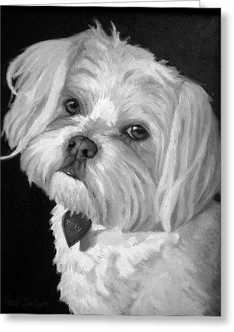 Maltese Greeting Cards - Toby Greeting Card by Enzie Shahmiri