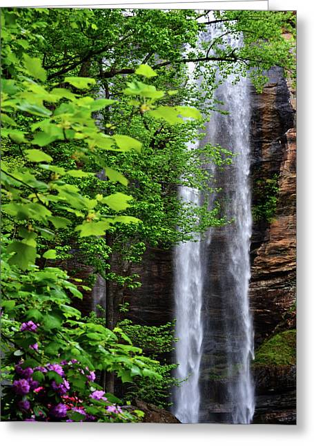 Toccoa Falls In Georgia Greeting Card by Eva Thomas