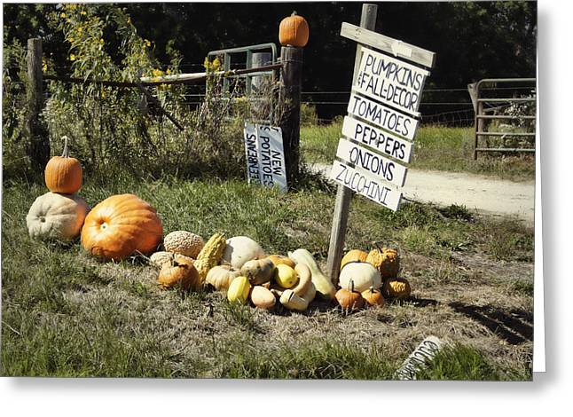 Greeting Card featuring the photograph Today's Harvest by Cricket Hackmann