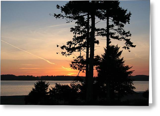 Tofino Sunset IIi Ss 1031 Greeting Card by Mary Gaines
