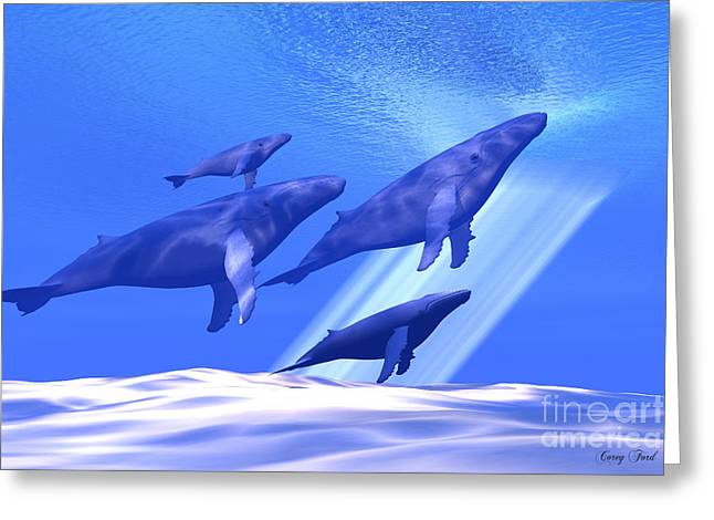 Together Greeting Card by Corey Ford