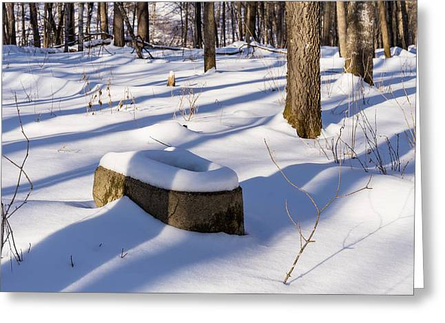 Toilet Remains Winter 1 Greeting Card by John Brueske