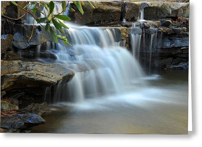 Greeting Card featuring the photograph Tolliver Fall by Dung Ma