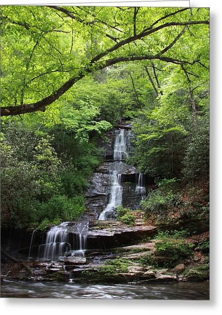 Tom Branch Falls - Gsmnp Greeting Card