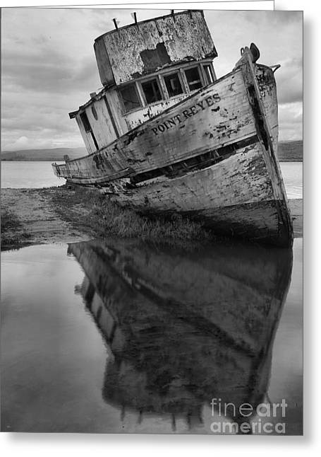 Tomales Bay Shipwreck Black And White Portrait Greeting Card by Adam Jewell