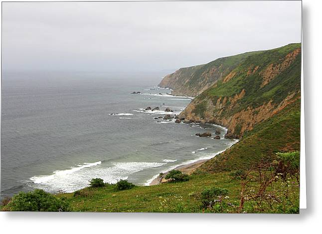 Tomales Point Cliffs Greeting Card by Sierra Vance