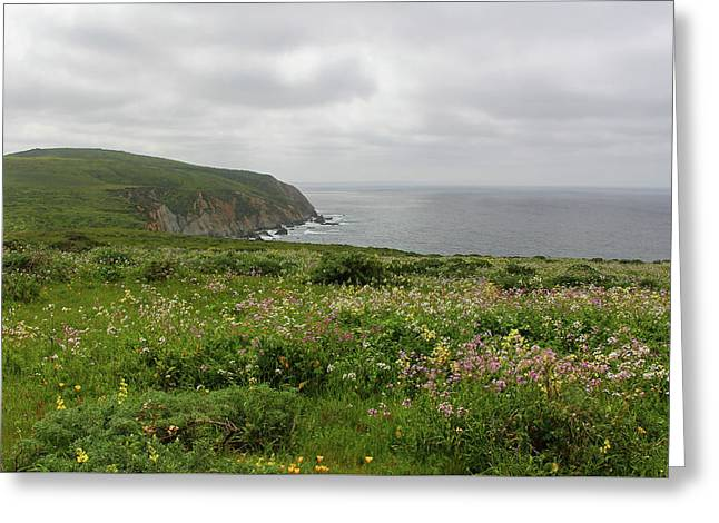 Tomales Point Flowers Greeting Card