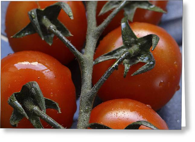 Tomato Greeting Card by Angela Aird