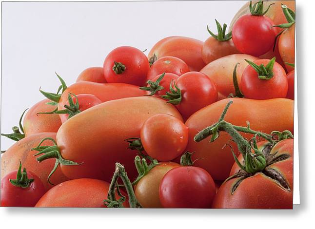 Greeting Card featuring the photograph Tomato Hill by James BO Insogna